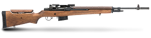 Springfield M1A|M21 Tactical Rifle
